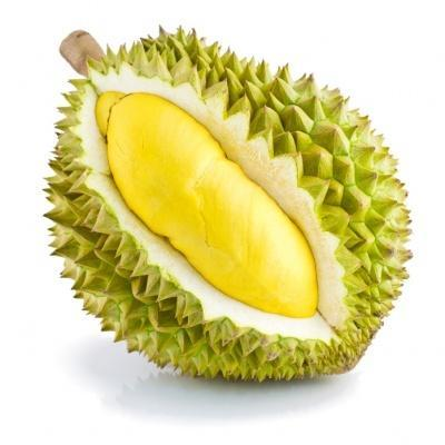 durian-500x500